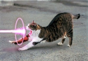 laser-cat-yawn